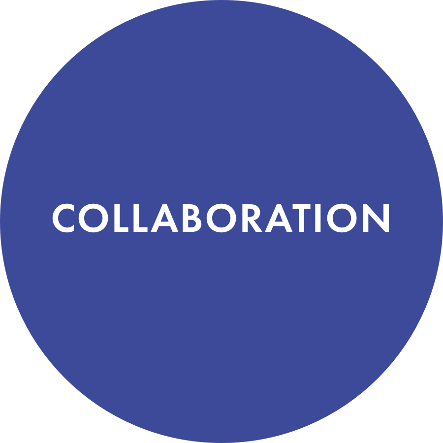 We are Collaborators - Digital Six